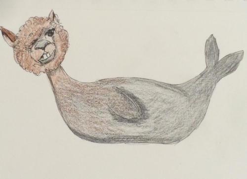 Alpaca-Seal